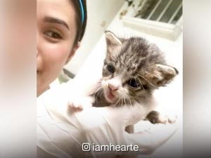 Heart Evangelista and Carla Abellana share their thoughts on abandoned animals