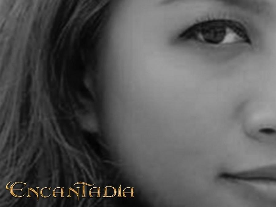 Who will play the role of Ades in 'Encantadia?'