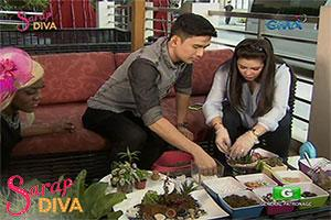 Sarap Diva: Christian Bautista teaches us how to make a terrarium