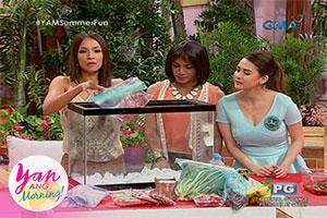 Yan Ang Morning!: Summer outing tips