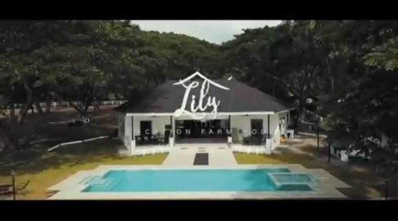 Lily Vacation Farm House